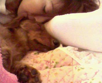 おやすみなさい(^_-)