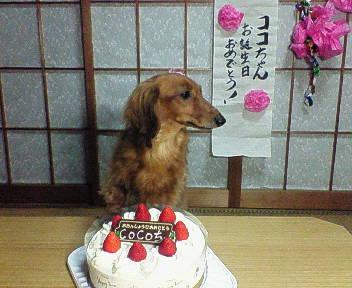 バースメッセージ有り難う(^O^)