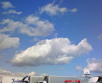 お魚さん雲
