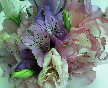 Oomisoka_flower